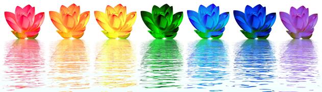 Chakra lotus flowers